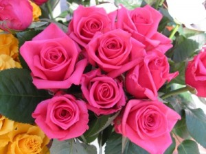 400_1212203580_ronal-rosas
